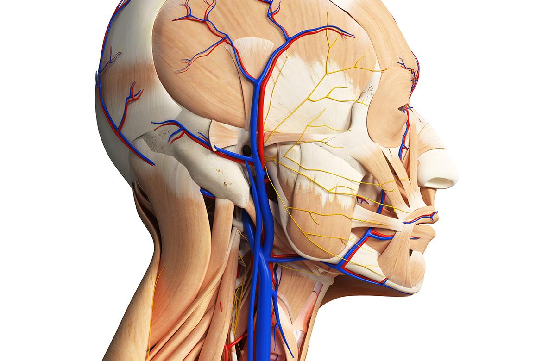 Insufficienza Venosa Cronica Cerebro Spinale (CCSVI)